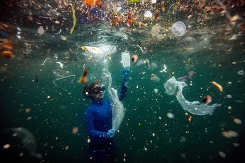 World Oceans Day: A Closer Look at the Problems We Face