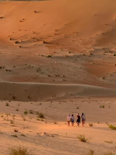 Desert cover image