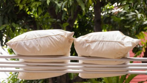 How Often Should You Wash Your Pillow? — Plus Other Must-Know Cleaning Facts