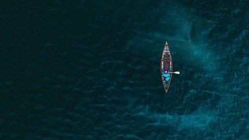 What If Megalodon Sharks Never Went Extinct?