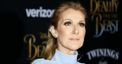 Céline Dion Broke Her Silence On That Fake Photo That Shocked Every Habs Fan In