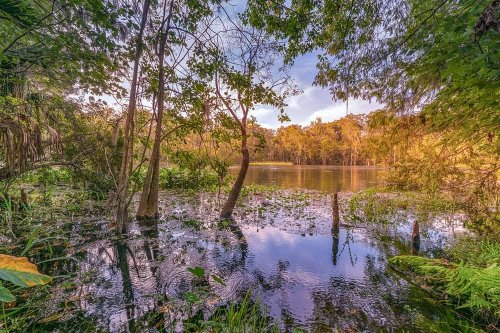 FLORIDA'S BEST STATE PARKS FOR AN ADVENTURE