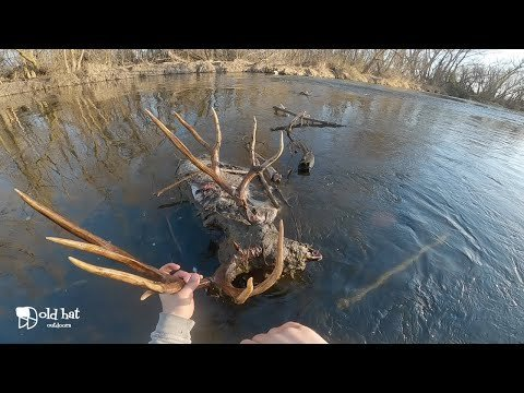 A fisherman reeled in a massive deer and hunters across the internet are jealous