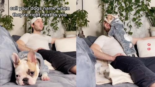 'Call Your Dog Challenge: Bulldog's Adorable Reaction'