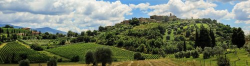 Ultimate Tuscany: Top Wineries & Regions to Visit