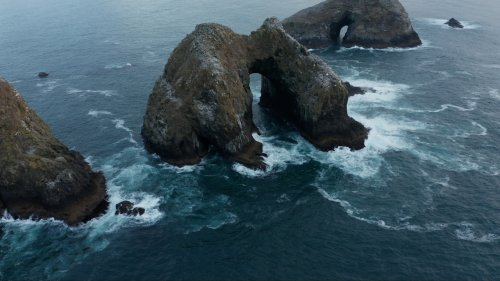 Oceanic Dead Zones Are Worse Than Ever