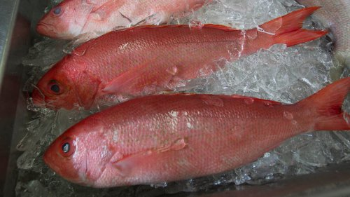 Seafood Hit With Shortages, Price Hikes Amid COVID-Related Supply Chain Issues