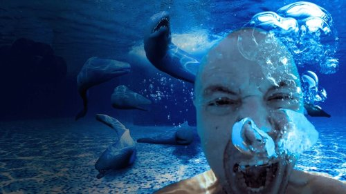 What If You Fell Into a Pool of Electric Eels?