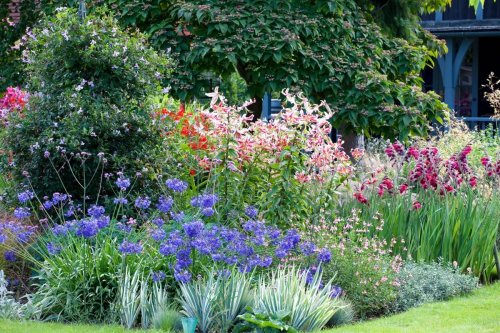 This is how to create the perfect cottage garden