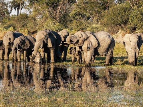 Reisetipps Afrika cover image
