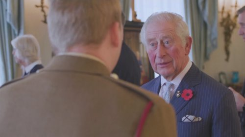 Prince Charles Launches Centenary Poppy Appeal
