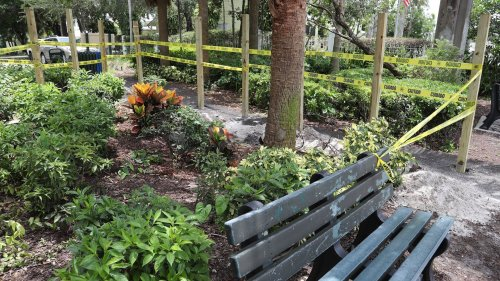 New River castle owner plans to take over neighboring park in Tarpon River