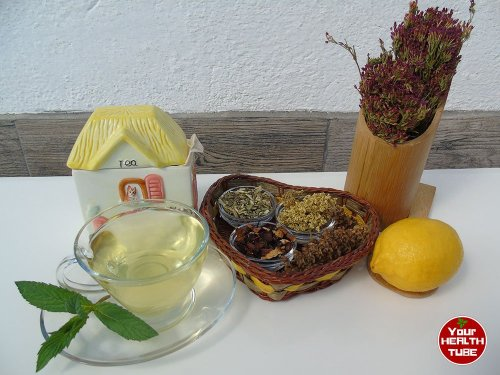 Great Herbs for Upper and Lower Respiratory Infections