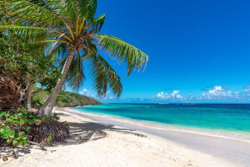 The Best Beaches In The Caribbean, Ranked & Food To Discover