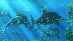 These 'Murder Dolphins' Had Really Weird Looking Teeth!