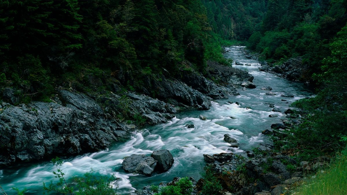 7 Wild and Scenic Rivers You Should Check Out, Plus Other Summer Adventure Ideas