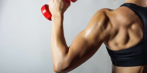 The Best Back Exercises for a Strong and Toned Upper Body