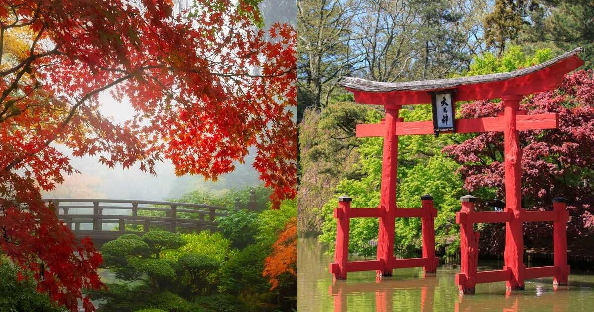 These Japanese Gardens Are The Perfect Spots To Ease Your Worried Mind