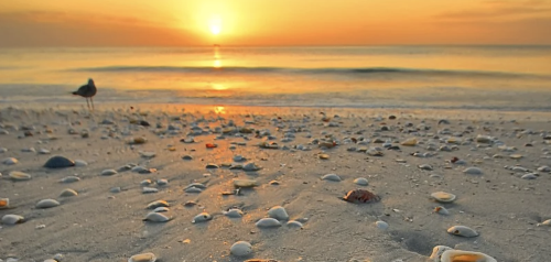14 Lesser-Known Florida Beach Towns To Escape To