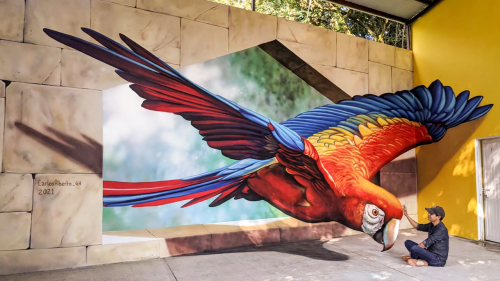 'Mexican Street Artist Paints a Jaw-Dropping 3D Mural of a Parrot'
