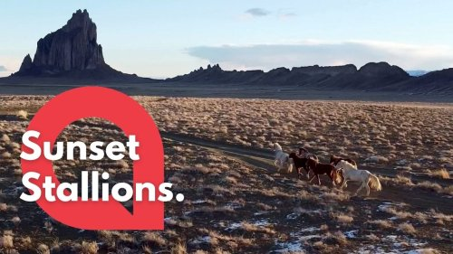 This drone footage shows a herd of wild horses as they gallop down a desert road at sunset (RAW)