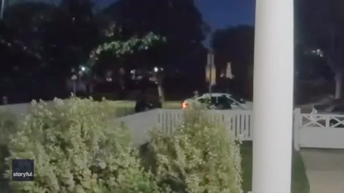 Footage Captures Moment Lady Gaga's Dog-Walker Was Shot