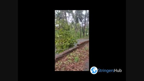 India: At least 6 dead after cyclone Tauktae batters Western Region