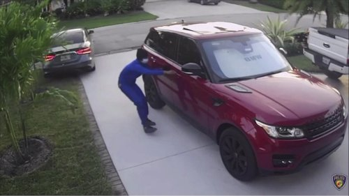Luxury car thieves making a killing on South Florida streets