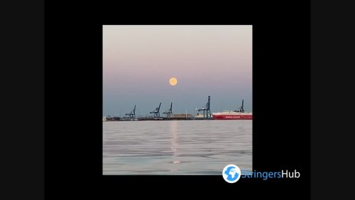 Pink Supermoon Of 2021 Dazzles Baltimore, MD