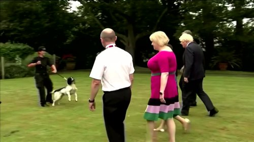 UK PM worried about his dog's romantic urges