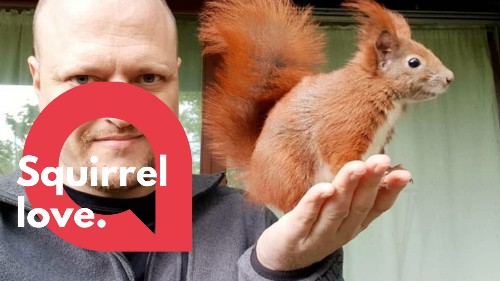 Man becomes BBFs with fluffy squirrel he rescued seven years ago - RAW