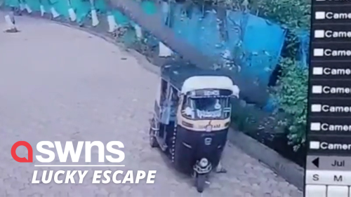 Tuk-tuk driver narrowly escapes injury after a COCONUT TREE crushes his vehicle in India