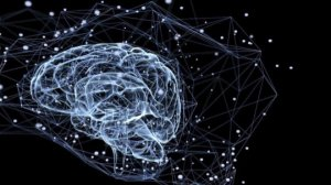 Humans Experience Thousands of Thoughts in a Single Day