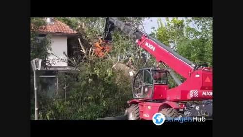 Netherlands: Crews clear downed trees after powerful winds in Utrecht