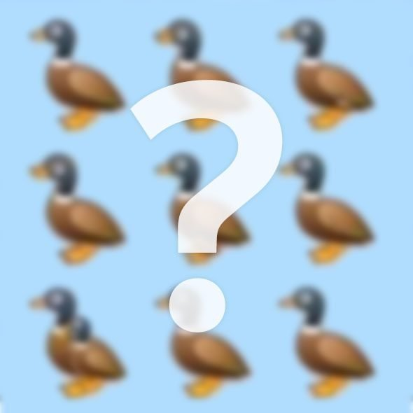 How Many Ducks Do You See? Try to Solve the Viral Riddle