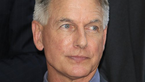 Why The NCIS Creator Was Fired From His Own Show