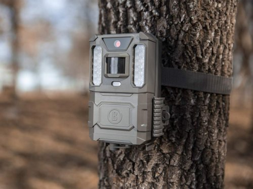Everything you need to know about trail cameras