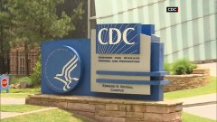 Discover cdc guidelines