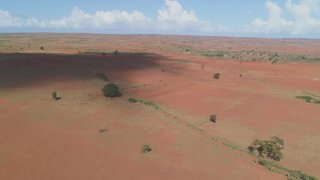 Madagascar faces starvation crisis amid record drought