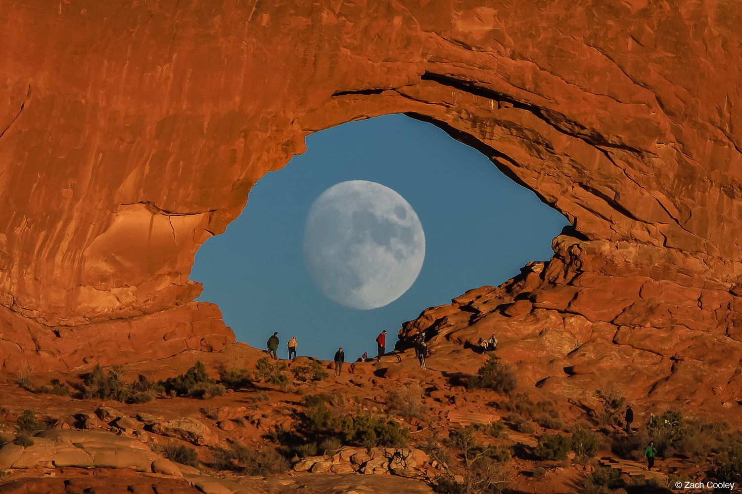 Wow!: The Stories Behind 5 Amazing Photos