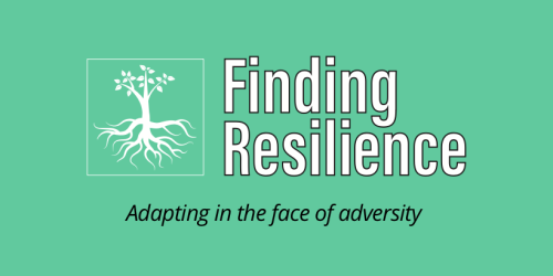Finding resilience - adapting in the face of adversity