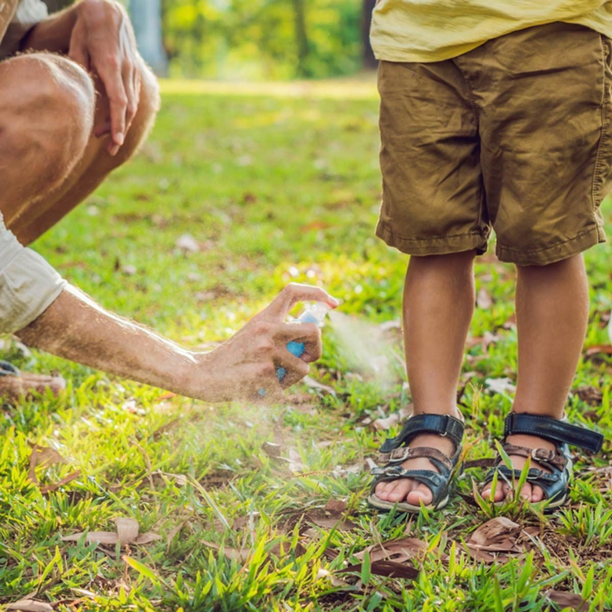 How To Beat Summer's Most Annoying Outdoor Pests
