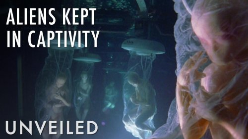 What If We Had Alien Zoos? | Unveiled