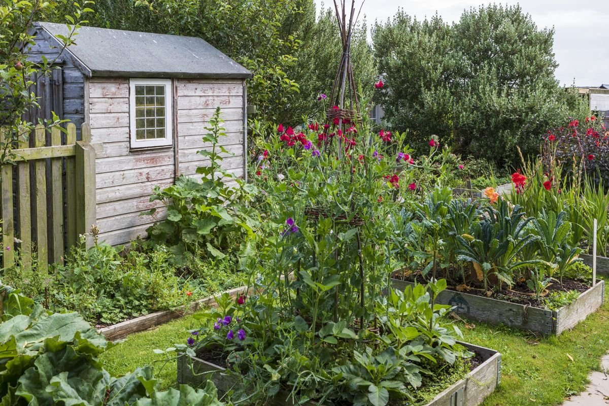 This is what you need to know when you're gardening