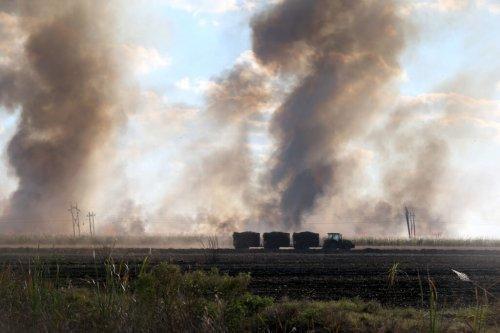 Big Sugar burns fields, bends DeSantis and FL Legislature to do its bidding