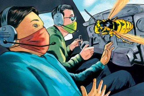 A Bug Interrupts a Flight Lesson
