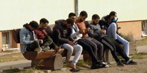 Geflüchtete im deutsch-polnischen Grenzgebiet - Video
