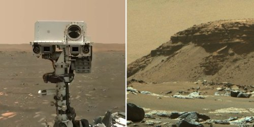 NASA: Bilder vom Mars könnten Hinweis auf Leben liefern - Parallelen zur Erde