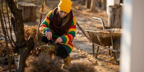 Garten winterfest machen: Diese Handgriffe dürfen Sie nicht vergessen