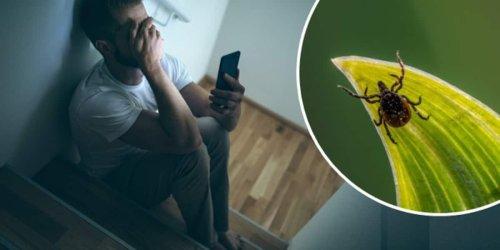 """""""Es war eine Horrorzeit"""": Yannick (20) wird in Psychiatrie eingewiesen – weil er Zecke nicht schnell entfernte"""